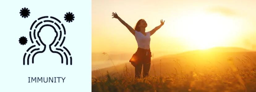 太陽光と免疫力