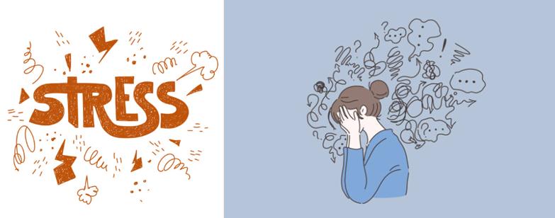 ストレス漢方薬